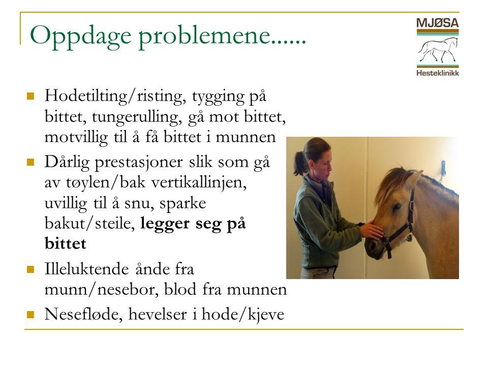 Oppdage problemene......