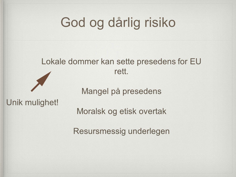 God og dårlig risiko Lokale dommer kan sette presedens for EU rett. Mangel på presedens Moralsk og etisk overtak Resursmessig underlegen Unik mulighet
