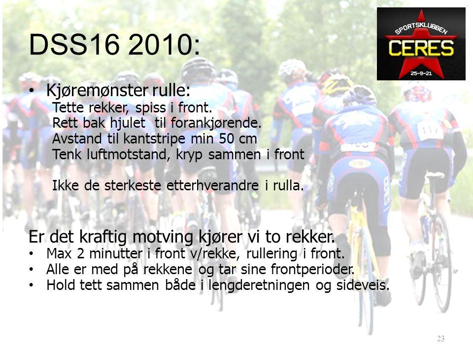DSS16 2010: Hvordan.