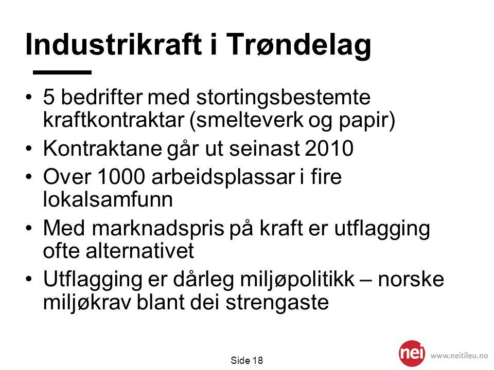 Side 18 Industrikraft i Trøndelag •5 bedrifter med stortingsbestemte kraftkontraktar (smelteverk og papir) •Kontraktane går ut seinast 2010 •Over 100