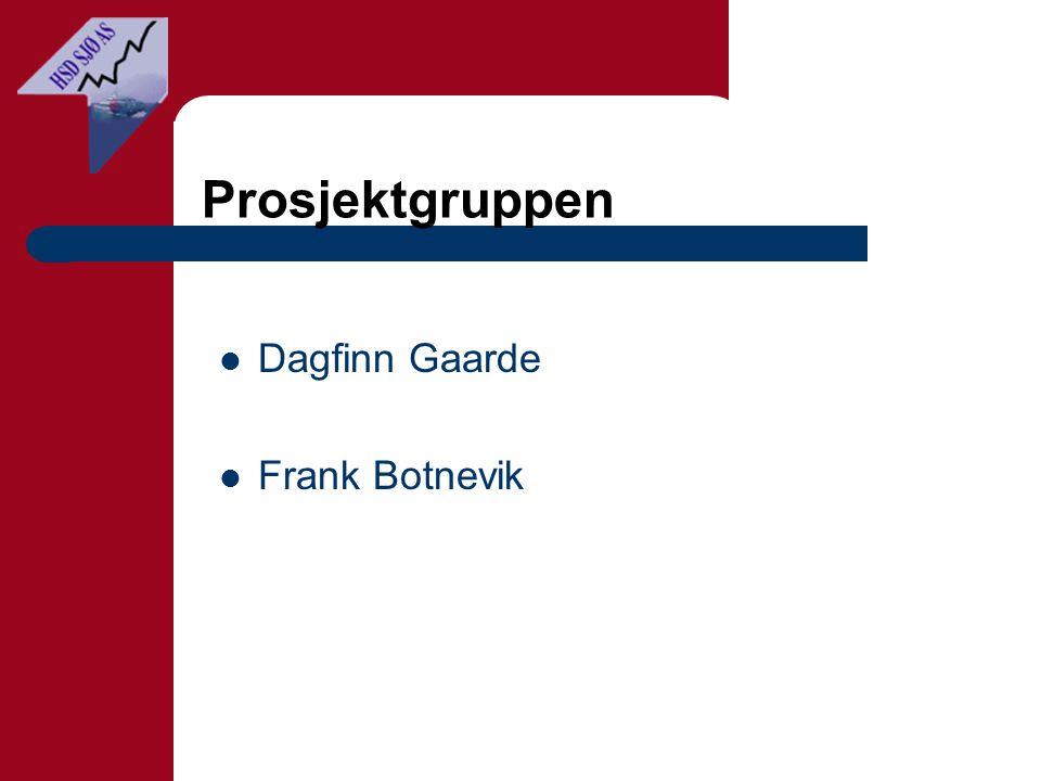 Prosjektgruppen  Dagfinn Gaarde  Frank Botnevik
