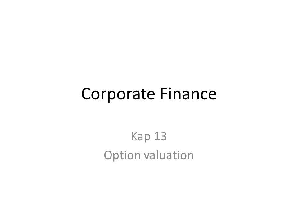 Corporate Finance Kap 13 Option valuation