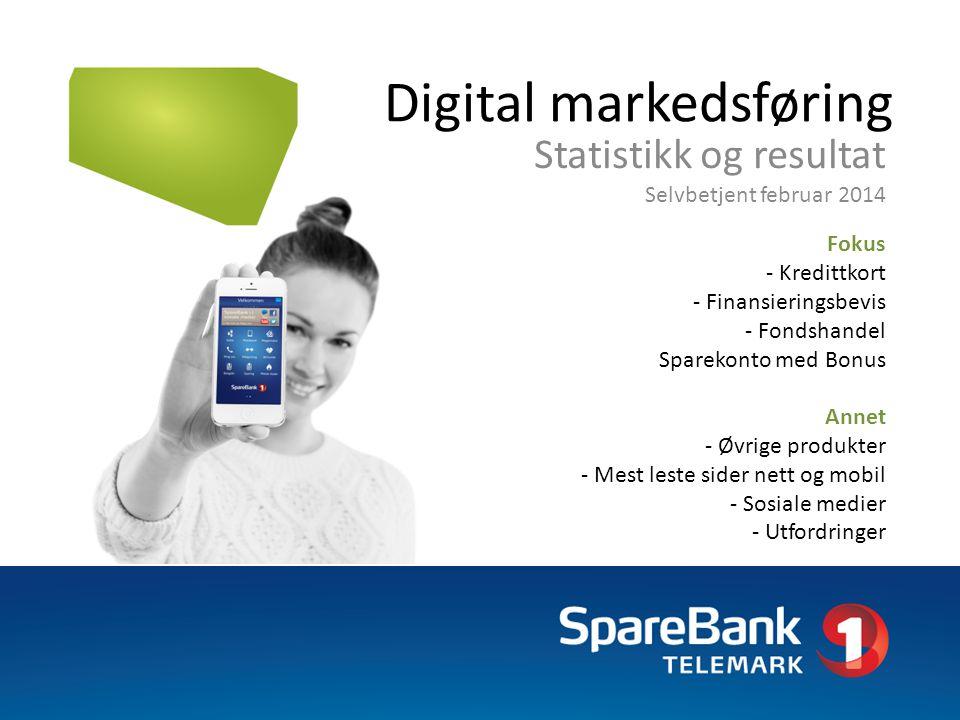 Digital markedsføring Statistikk og resultat Selvbetjent februar 2014 Fokus - Kredittkort - Finansieringsbevis - Fondshandel Sparekonto med Bonus Anne