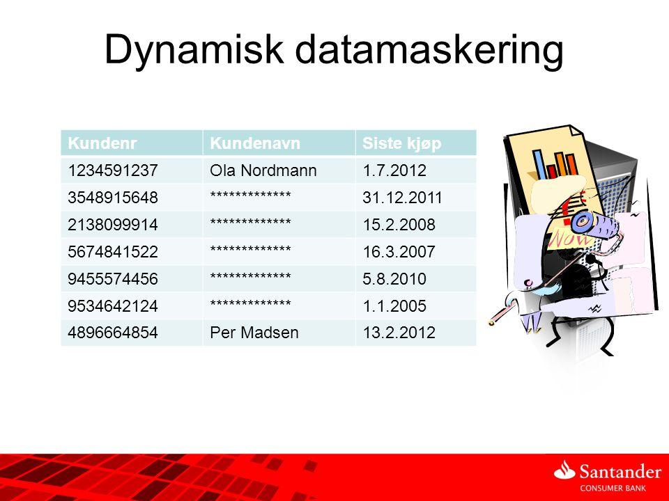 Dynamisk datamaskering KundenrKundenavnSiste kjøp 1234591237Ola Nordmann1.7.2012 3548915648Kari Nordmann31.12.2011 2138099914Lars Johannesen15.2.2008