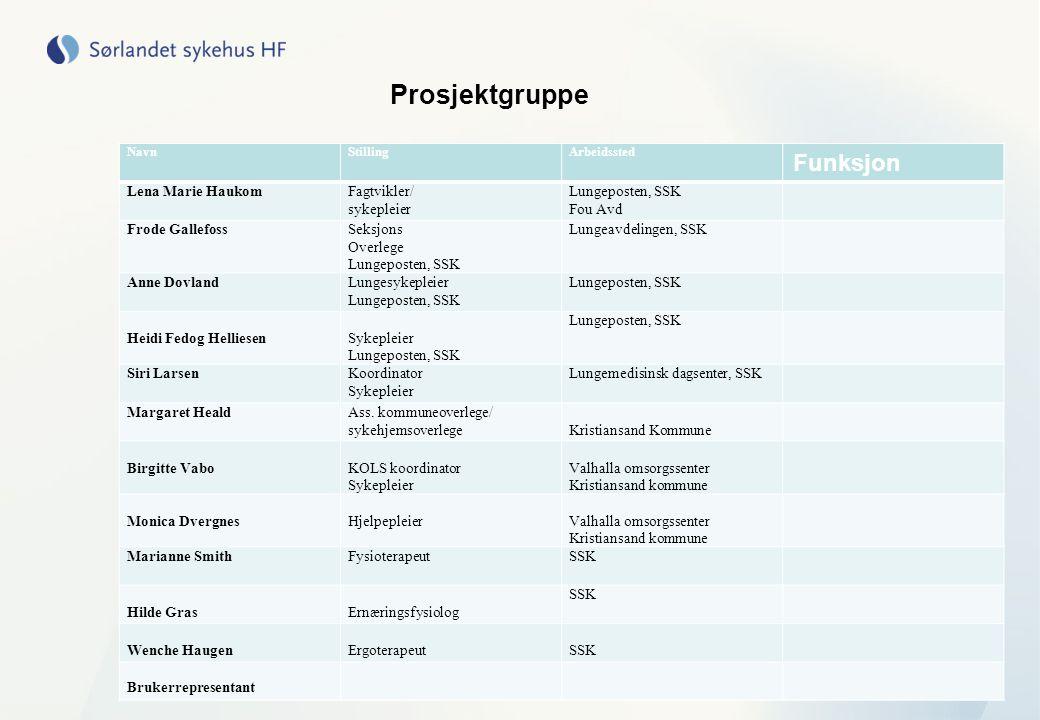 Prosjektgruppe NavnStillingArbeidssted Funksjon Lena Marie HaukomFagtvikler/ sykepleier Lungeposten, SSK Fou Avd Frode GallefossSeksjons Overlege Lung