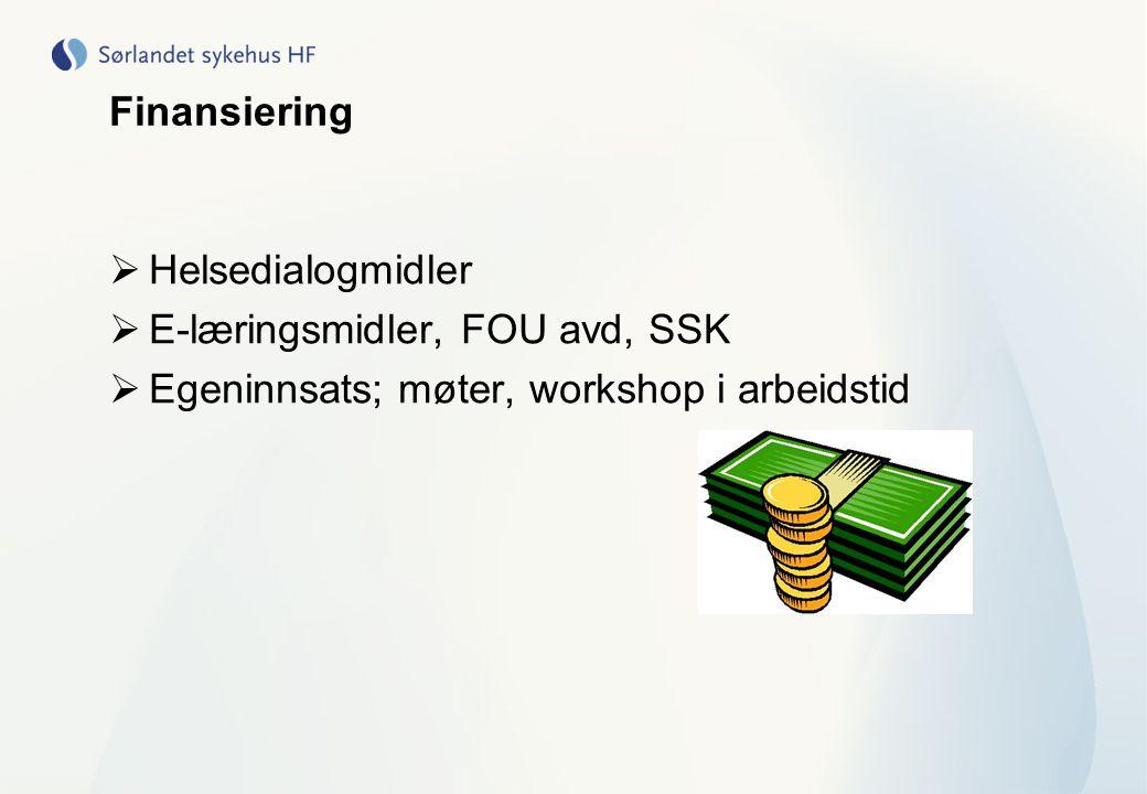 Finansiering  Helsedialogmidler  E-læringsmidler, FOU avd, SSK  Egeninnsats; møter, workshop i arbeidstid