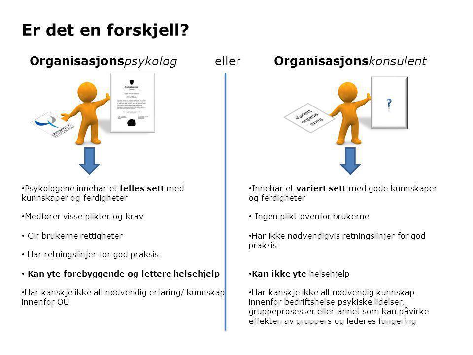 Organisasjonspsykolog eller Organisasjonskonsulent Er det en forskjell.