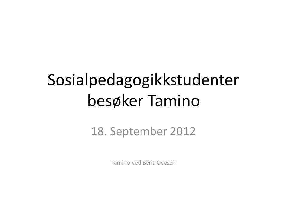 Sosialpedagogikkstudenter besøker Tamino 18. September 2012 Tamino ved Berit Ovesen