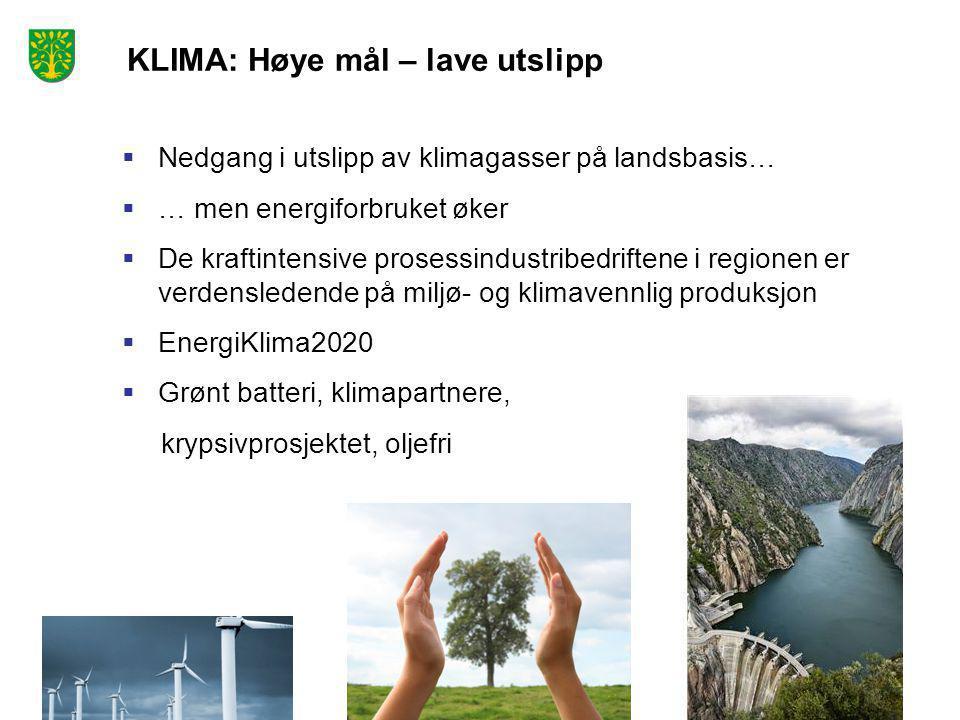 KLIMA: Høye mål – lave utslipp  Nedgang i utslipp av klimagasser på landsbasis…  … men energiforbruket øker  De kraftintensive prosessindustribedriftene i regionen er verdensledende på miljø- og klimavennlig produksjon  EnergiKlima2020  Grønt batteri, klimapartnere, krypsivprosjektet, oljefri