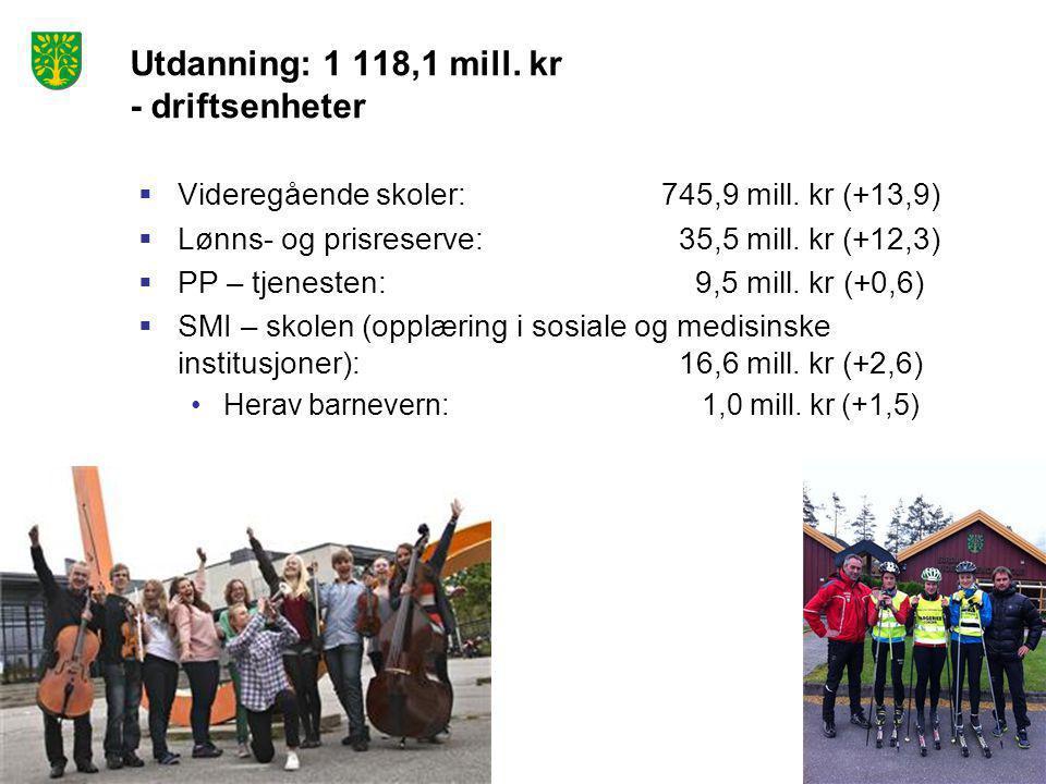 Utdanning: 1 118,1 mill. kr - driftsenheter  Videregående skoler:745,9 mill. kr (+13,9)  Lønns- og prisreserve: 35,5 mill. kr (+12,3)  PP – tjenest