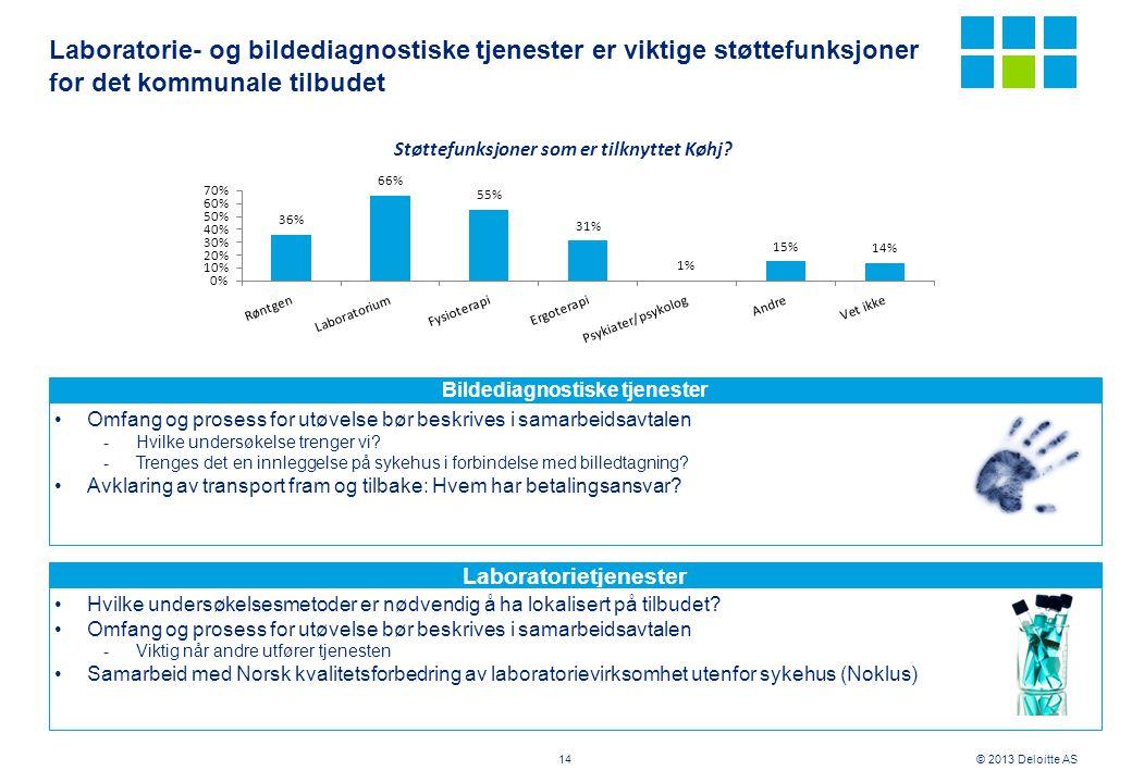 © 2013 Deloitte AS Laboratorie- og bildediagnostiske tjenester er viktige støttefunksjoner for det kommunale tilbudet 14 Bildediagnostiske tjenester L