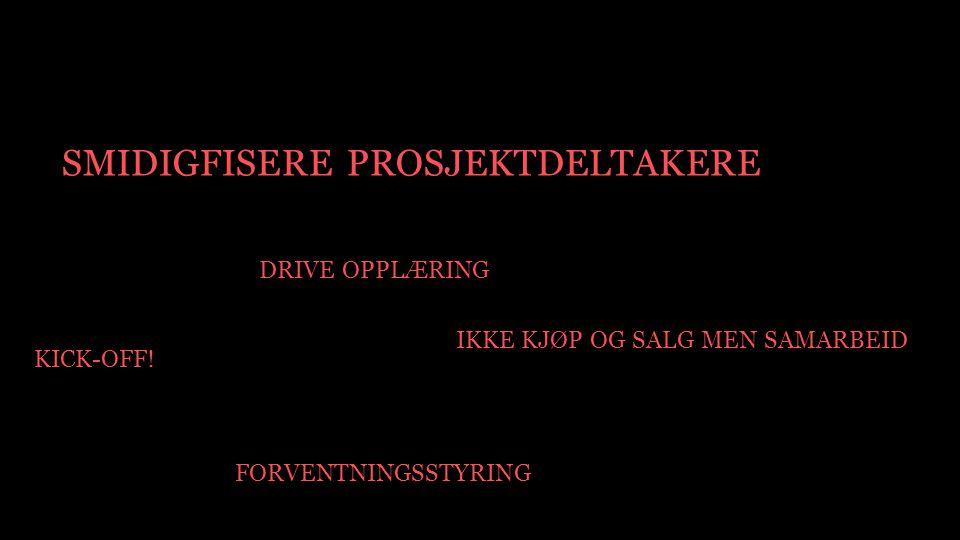 SMIDIGFISERE PROSJEKTDELTAKERE DRIVE OPPLÆRING FORVENTNINGSSTYRING IKKE KJØP OG SALG MEN SAMARBEID KICK-OFF!