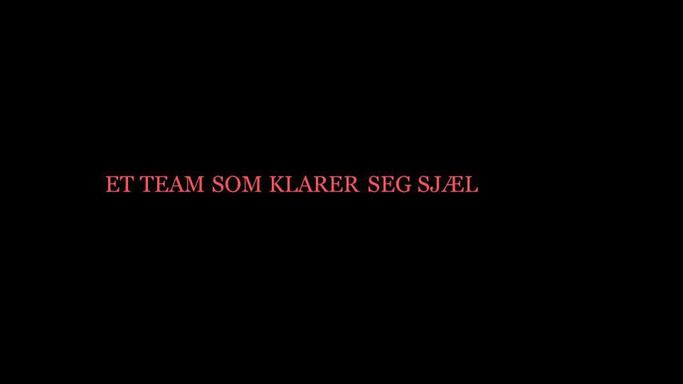 ET TEAM SOM KLARER SEG SJÆL