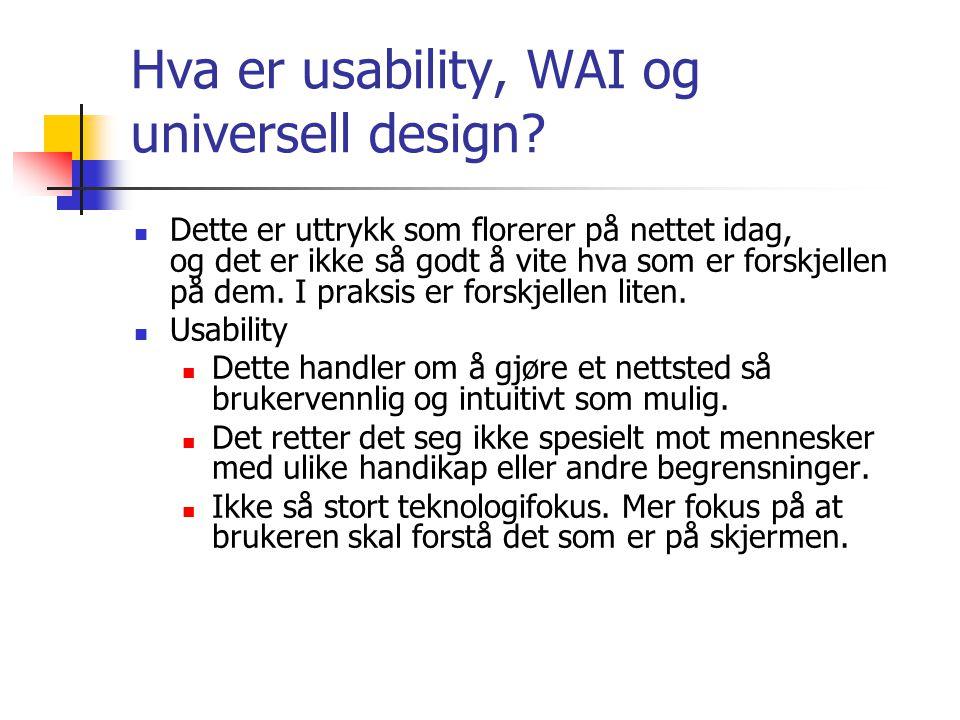 Hva er usability, WAI og universell design?  Dette er uttrykk som florerer på nettet idag, og det er ikke så godt å vite hva som er forskjellen på de