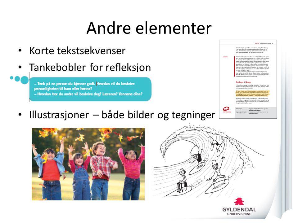 Andre elementer • Korte tekstsekvenser • Tankebobler for refleksjon • Illustrasjoner – både bilder og tegninger