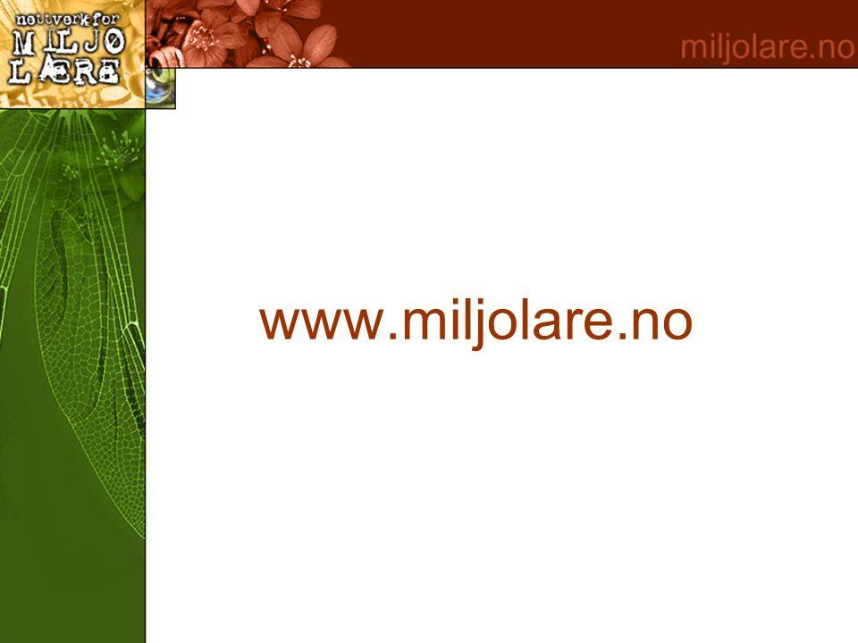 www.miljolare.no