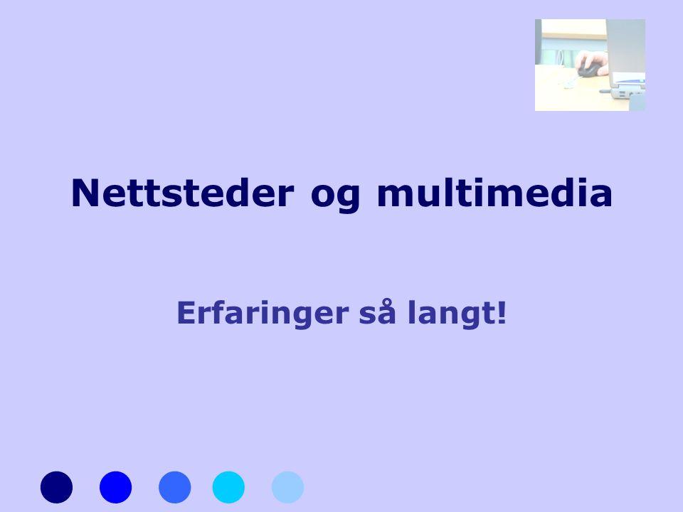 Nettsteder og multimedia Erfaringer så langt!