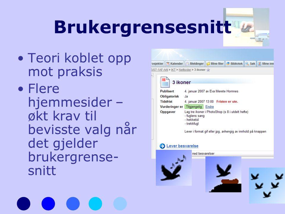 Brukergrensesnitt •Teori koblet opp mot praksis •Flere hjemmesider – økt krav til bevisste valg når det gjelder brukergrense- snitt