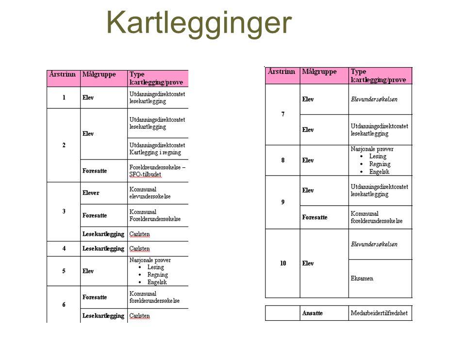 Kartlegginger