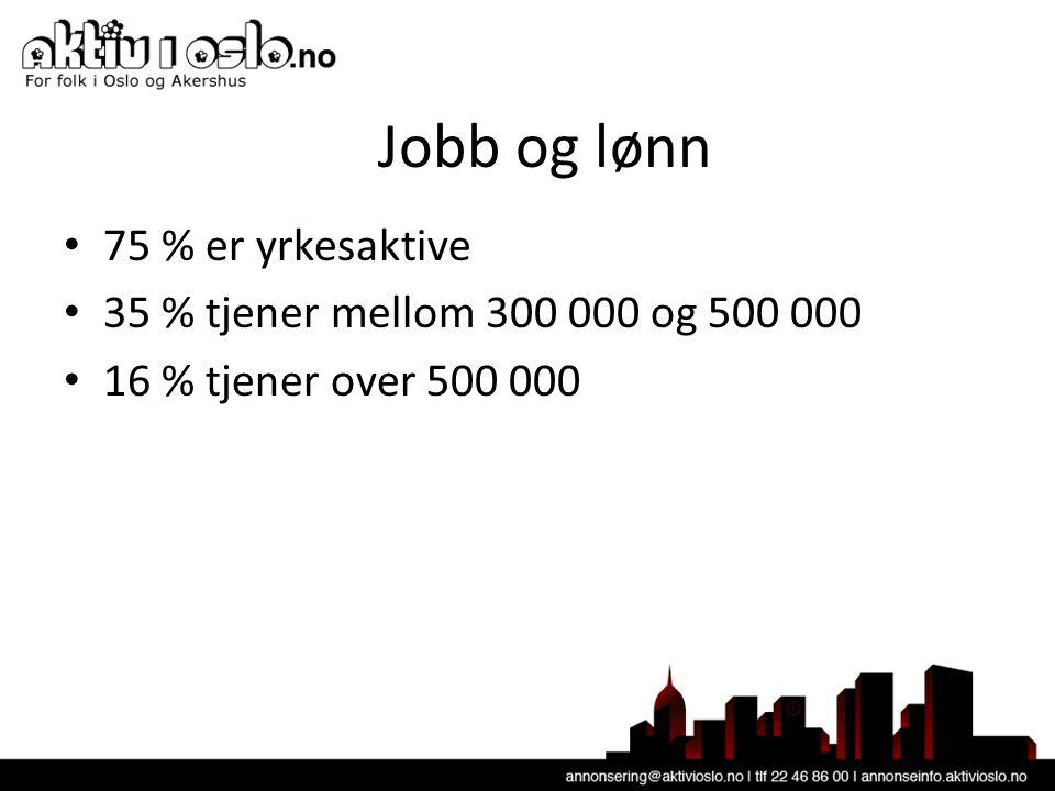 Jobb og lønn • 75 % er yrkesaktive • 35 % tjener mellom 300 000 og 500 000 • 16 % tjener over 500 000