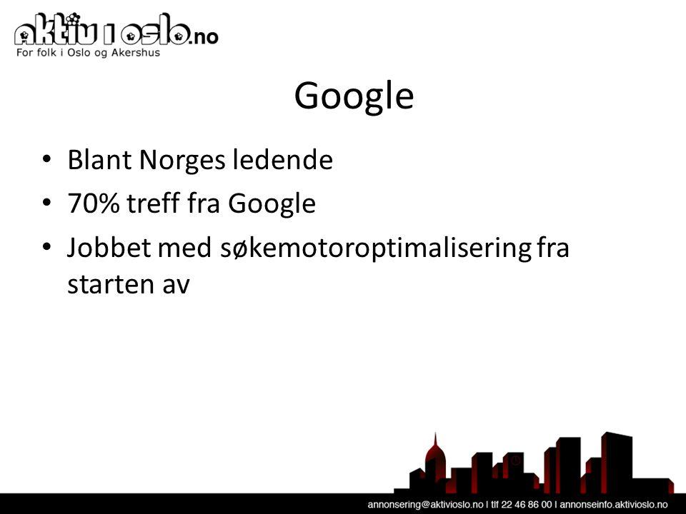 Google • Blant Norges ledende • 70% treff fra Google • Jobbet med søkemotoroptimalisering fra starten av