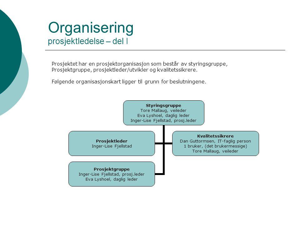 Organisering prosjektledelse – del I Styringsgruppe Tore Mallaug, veileder Eva Lyshoel, daglig leder Inger-Lise Fjellstad, prosj.leder Prosjektleder I