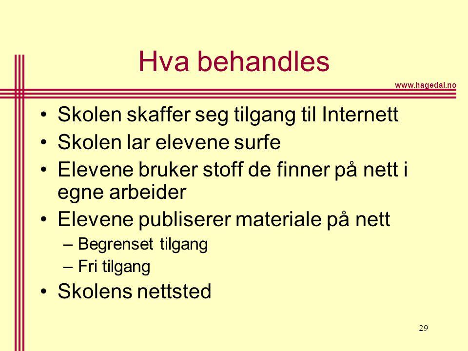 www.hagedal.no 29 Hva behandles •Skolen skaffer seg tilgang til Internett •Skolen lar elevene surfe •Elevene bruker stoff de finner på nett i egne arb