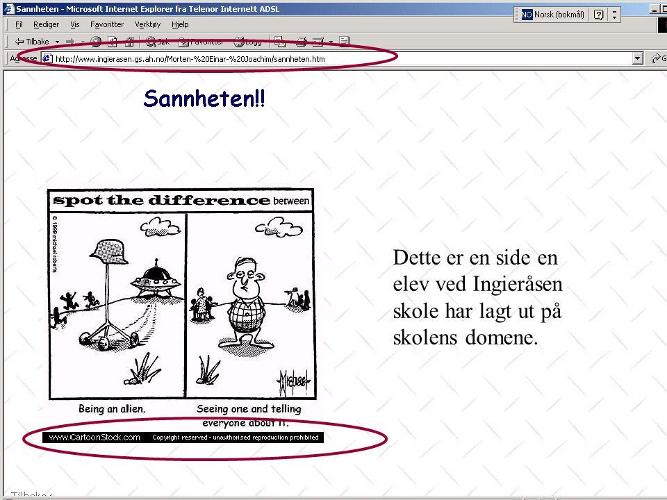 www.hagedal.no 39 Skolens eller klassens nettsted I •Spørsmål: –Har skolen en strategi for å bruke Internett i informasjonsformidling.