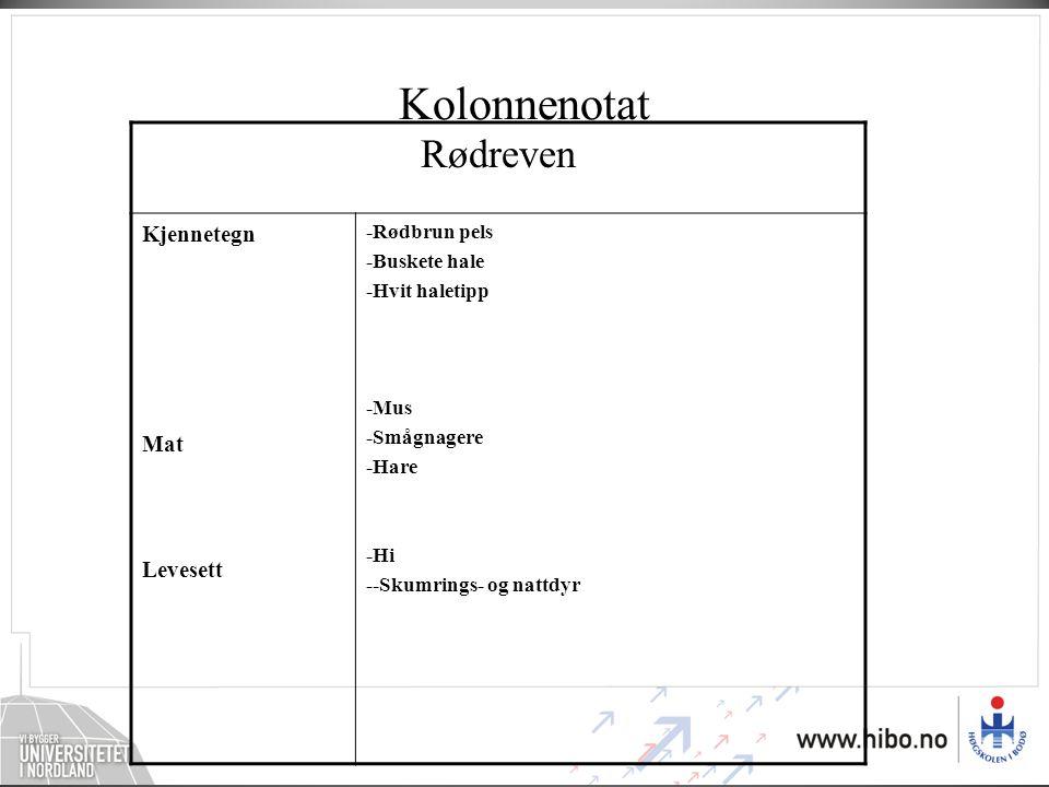 Kolonnenotat Rødreven Kjennetegn Mat Levesett -Rødbrun pels -Buskete hale -Hvit haletipp -Mus -Smågnagere -Hare -Hi --Skumrings- og nattdyr