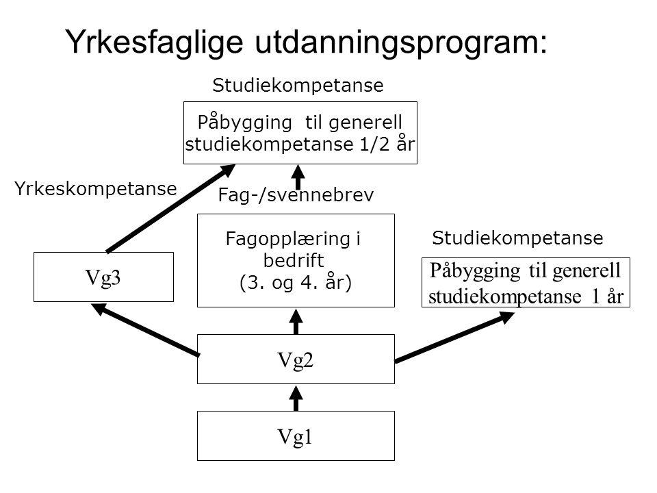 Yrkesfaglige utdanningsprogram: Vg2 Fagopplæring i bedrift (3. og 4. år) Vg1 Fag-/svennebrev Studiekompetanse Påbygging til generell studiekompetanse