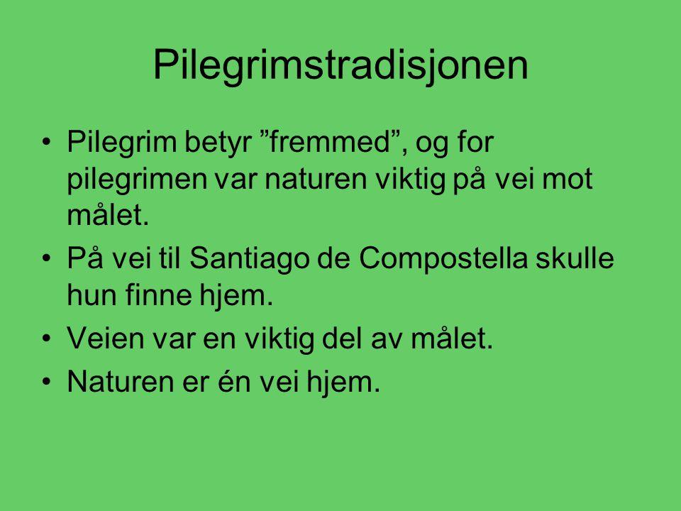 Pilegrimstradisjonen •P•Pilegrim betyr fremmed , og for pilegrimen var naturen viktig på vei mot målet.