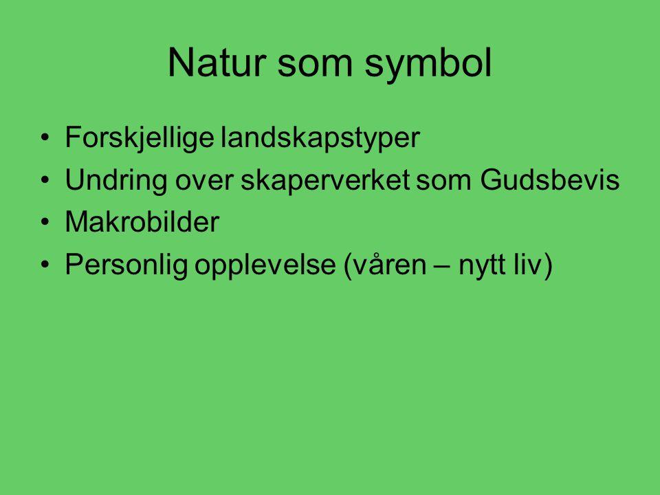 Natur som symbol •F•Forskjellige landskapstyper •U•Undring over skaperverket som Gudsbevis •M•Makrobilder •P•Personlig opplevelse (våren – nytt liv)