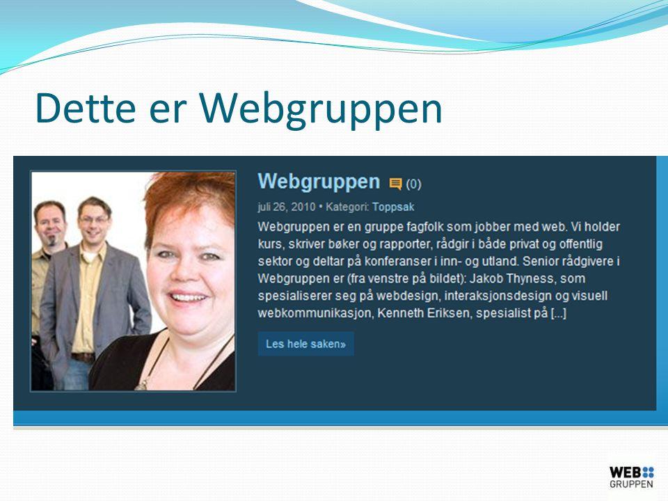 Kampanjer – ekstern markedsføring  Bannere  Lenker angitt i papirannonser  Emails  Adwords  Lenker i Sosiale medier  Lenker fra blogger  Lenkene tagges med Google's URL builder
