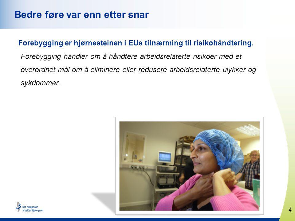 4 www.healthy-workplaces.eu Bedre føre var enn etter snar Forebygging er hjørnesteinen i EUs tilnærming til risikohåndtering.