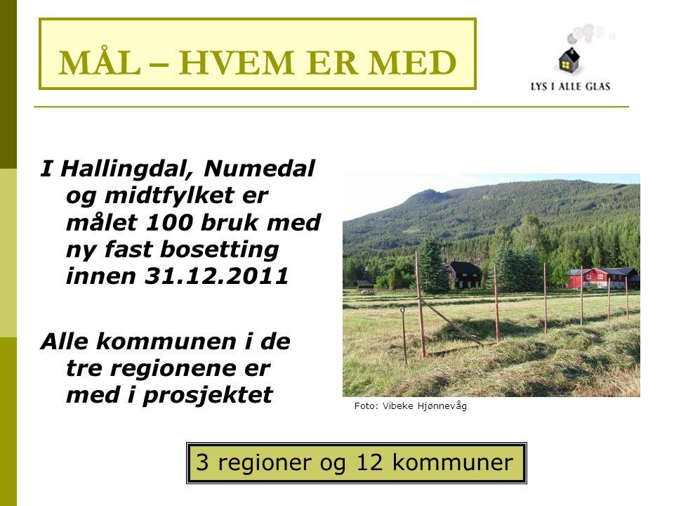 I Hallingdal, Numedal og midtfylket er målet 100 bruk med ny fast bosetting innen 31.12.2011 Alle kommunen i de tre regionene er med i prosjektet MÅL