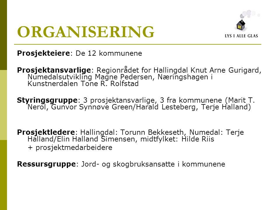 ORGANISERING Prosjekteiere: De 12 kommunene Prosjektansvarlige: Regionrådet for Hallingdal Knut Arne Gurigard, Numedalsutvikling Magne Pedersen, Nærin