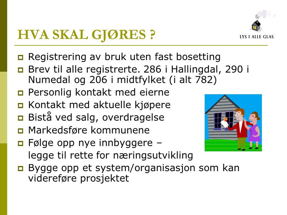 HVA SKAL GJØRES ?  Registrering av bruk uten fast bosetting  Brev til alle registrerte. 286 i Hallingdal, 290 i Numedal og 206 i midtfylket (i alt 7