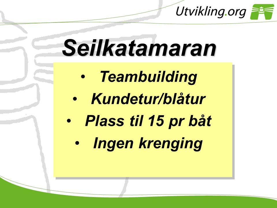 Seilkatamaran •Teambuilding •Kundetur/blåtur •Plass til 15 pr båt •Ingen krenging