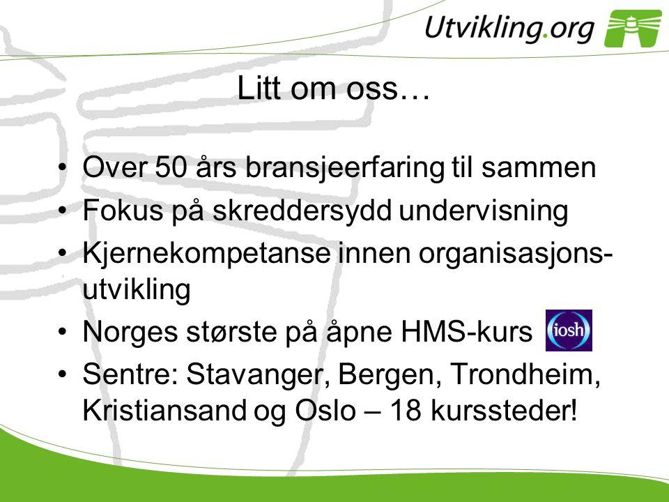 Litt om oss… •Over 50 års bransjeerfaring til sammen •Fokus på skreddersydd undervisning •Kjernekompetanse innen organisasjons- utvikling •Norges stør