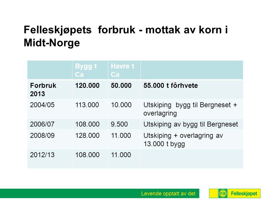 Felleskjøpets forbruk - mottak av korn i Midt-Norge Bygg t Ca Havre t Ca Forbruk 2013 120.00050.00055.000 t fôrhvete 2004/05113.00010.000Utskiping bygg til Bergneset + overlagring 2006/07108.0009.500Utskiping av bygg til Bergneset 2008/09128.00011.000Utskiping + overlagring av 13.000 t bygg 2012/13108.00011.000