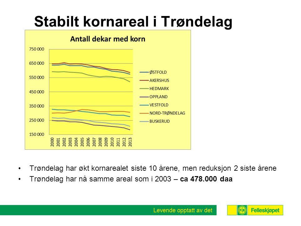 Stabilt kornareal i Trøndelag •Trøndelag har økt kornarealet siste 10 årene, men reduksjon 2 siste årene •Trøndelag har nå samme areal som i 2003 – ca 478.000 daa