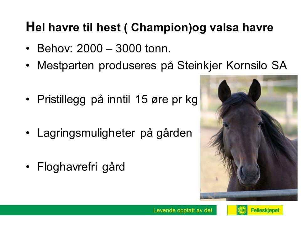 H el havre til hest ( Champion)og valsa havre •Behov: 2000 – 3000 tonn.