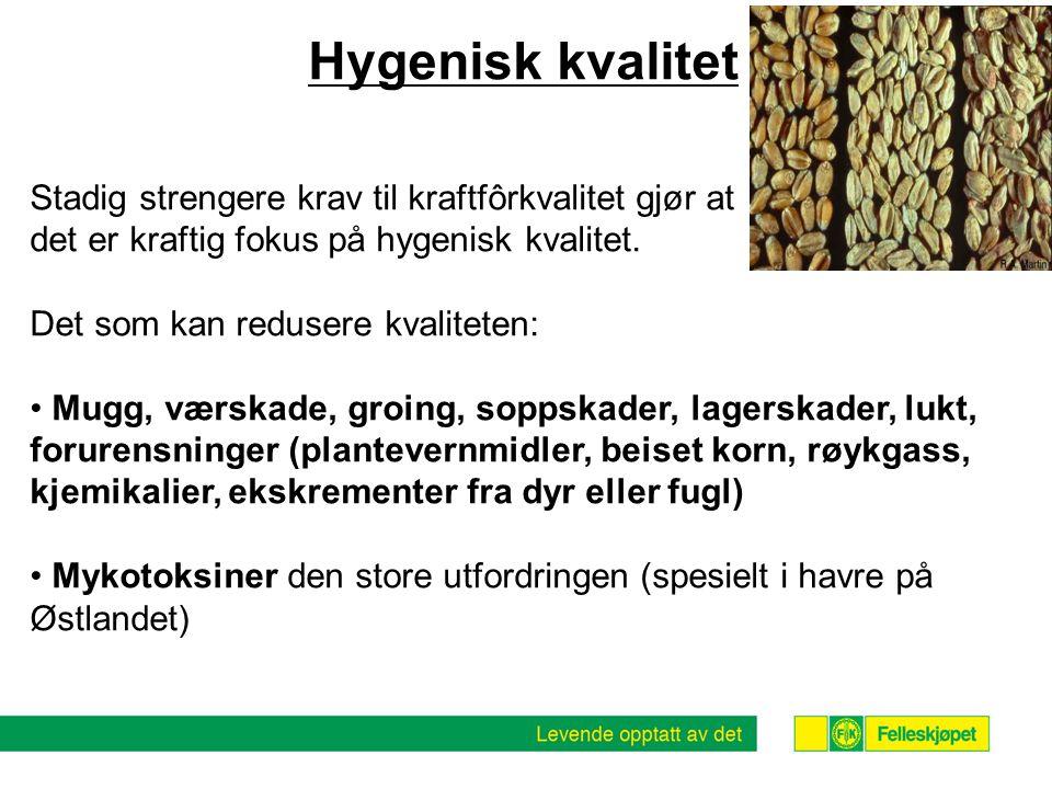 Hygenisk kvalitet Stadig strengere krav til kraftfôrkvalitet gjør at det er kraftig fokus på hygenisk kvalitet.