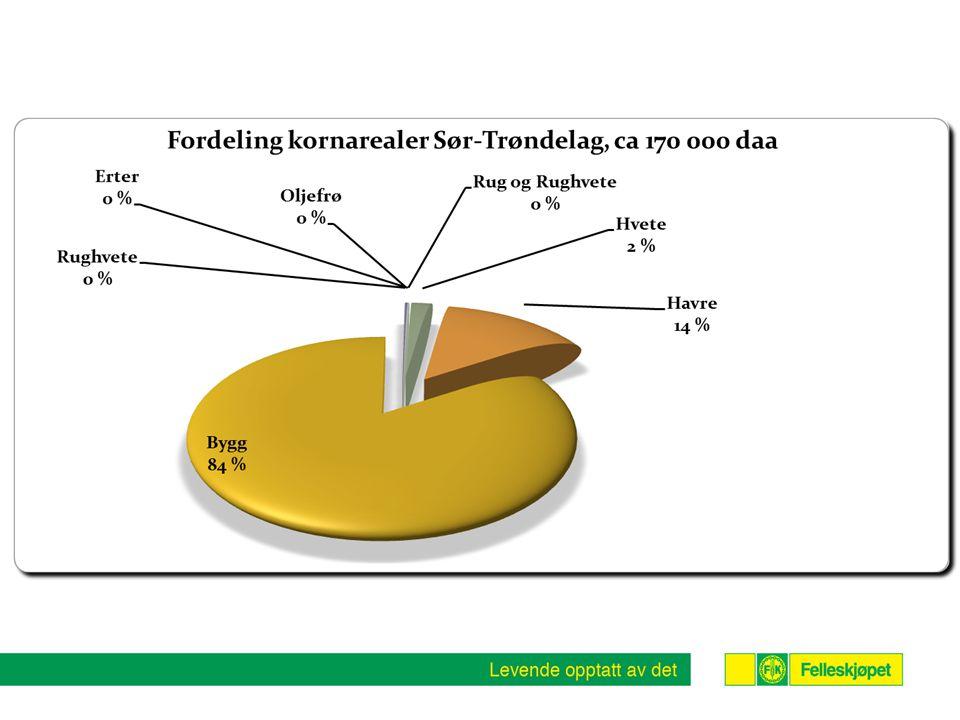 •2-3 % dreining fra bygg til havre siste 5 årene ( 2012 -9,4 %)