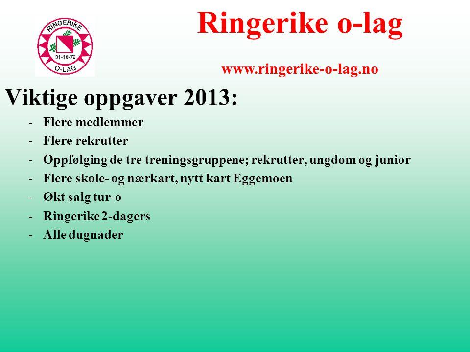  Årsplan 2013 – utvalgsvis gjennomgang  Rekruttering og trening  Ungdom  Arrangement  Kart  Tur-o  Dugnad  Informasjon Ringerike o-lag www.ringerike-o-lag.no