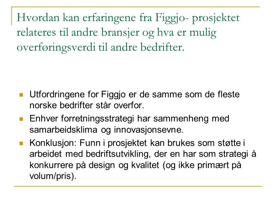 Hvordan kan erfaringene fra Figgjo- prosjektet relateres til andre bransjer og hva er mulig overføringsverdi til andre bedrifter.  Utfordringene for