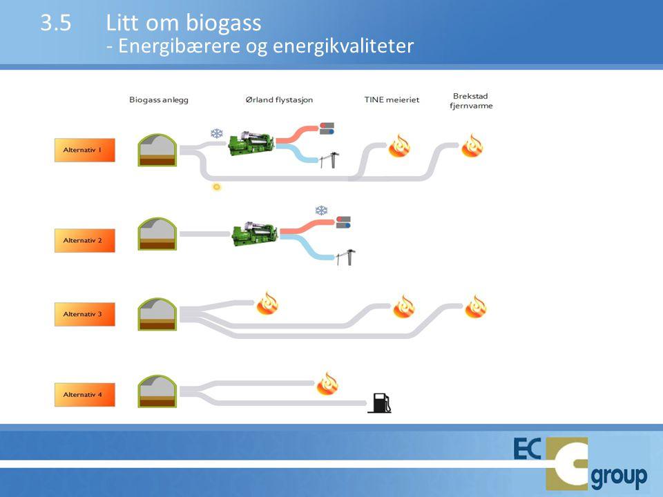 3.5Litt om biogass - Energibærere og energikvaliteter