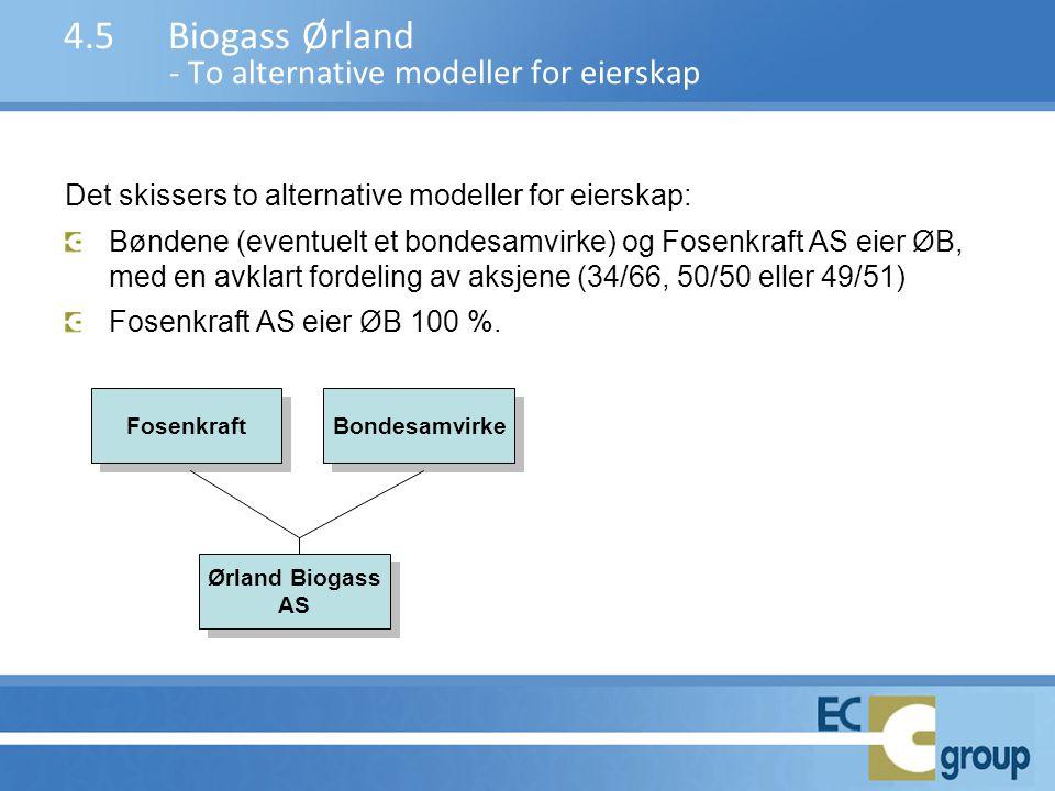 Det skissers to alternative modeller for eierskap: Bøndene (eventuelt et bondesamvirke) og Fosenkraft AS eier ØB, med en avklart fordeling av aksjene