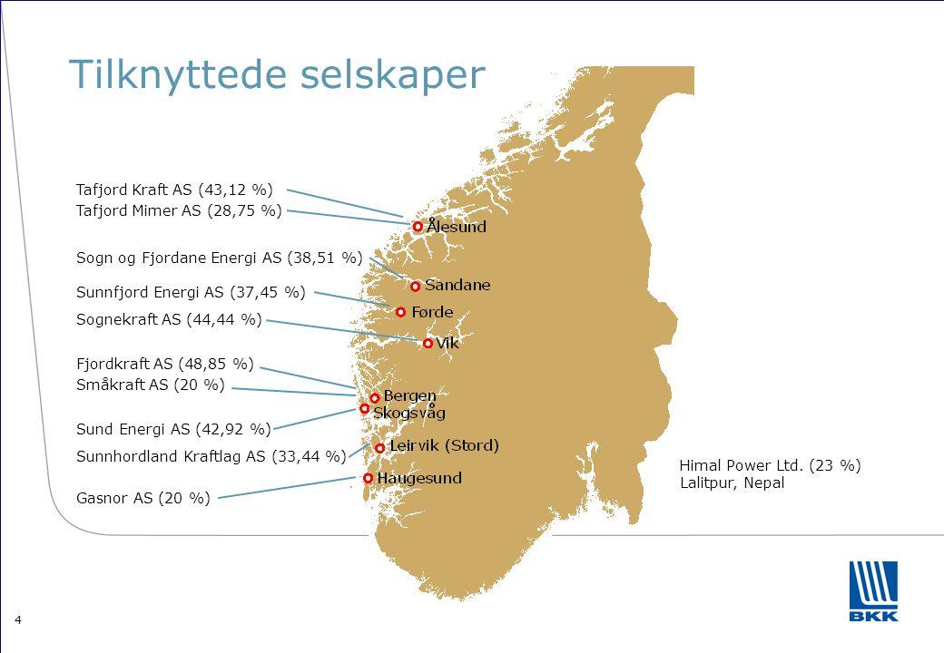 4 Tilknyttede selskaper Fjordkraft AS (48,85 %) Småkraft AS (20 %) Gasnor AS (20 %) Sogn og Fjordane Energi AS (38,51 %) Himal Power Ltd. (23 %) Lalit