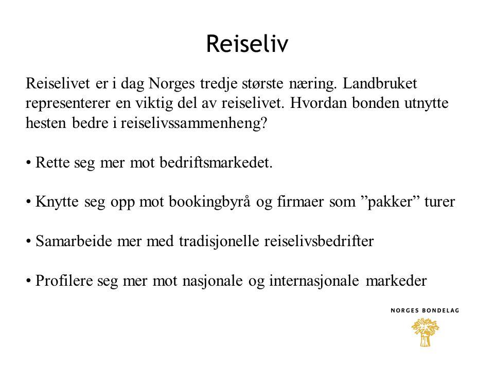 Reiseliv Reiselivet er i dag Norges tredje største næring. Landbruket representerer en viktig del av reiselivet. Hvordan bonden utnytte hesten bedre i